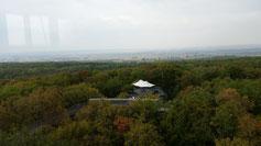 Es ist der 2. Baumkronenpfad, der in DEU eröffnet wurde