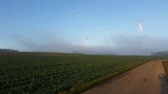 Nach 100 m ist der Sendeturm nicht mehr zu erkennen... auch das erste Windrad ist fast verschwunden...