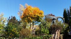 Ein herrlicher Garten - mit Herbst...