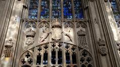 Die Wappen der Tudor...