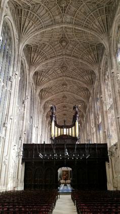 Das herrliche Fächergewölbe der Kapelle...