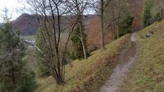 Wasserlachen säumen den Weg...