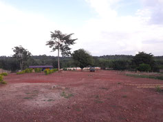 Der Ausblick vom Kinderdorf auf den Busch