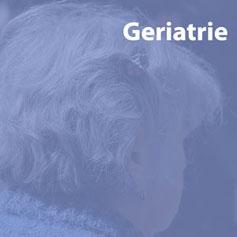 Ergotherapie für alte Menschen im Fachbereich Geriatrie