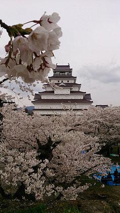 kayolinさん: 福島県会津若松市 鶴ヶ城
