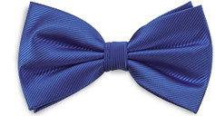 Kobalt Blauwe Strik