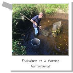 Pisciculture de la Wamme - Truite et saumon de fontaine - Hargimont