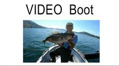 Lachse angeln in Norwegen, Alternative angeln mit leichter Rute im Fjord und im Meer, mit Blinker