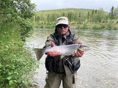 Lachse angeln in Norwegen, mittlerer Fluss, mit Blinker