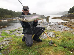 Lachse angeln in Norwegen, Straumen, mit Fliegenrute