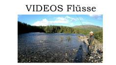 Lachse angeln in Norwegen, mehrere Flüsse, Lachse mit Blinker und Fliege