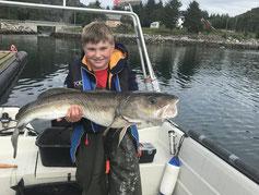 Lachse angeln in Norwegen, angeln in Meer und Fjord auf Dorsch,