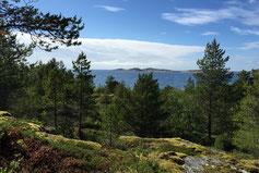 2019-08-26 wirklich wundervolle Landschaften auf der Rückreise in Norge und in Schweden