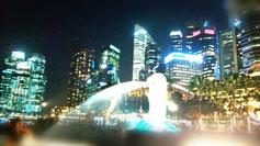 シンガポール出張lesson