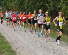 die schnellsten Läufer