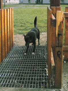 Sensus Dogstop Grating