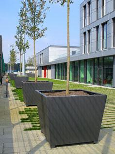 Gala Planter Box