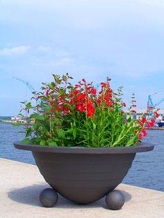 Bassin Planter