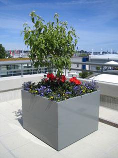 Flora Planter Box