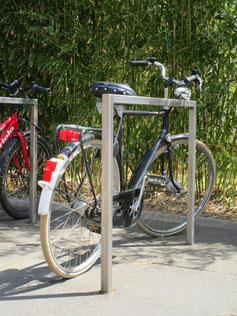 Habit Cycle Rack