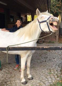 Caroline Haas, Omnipathie für Tiere