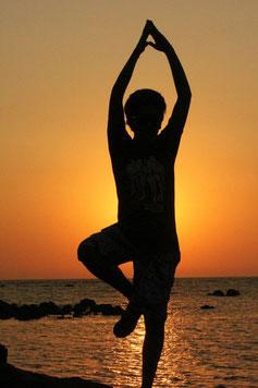 soins ayurvédiques massage abhyanga, shirodhara,kati basti,ourdvartana, nasya,et massage des 5 élèments