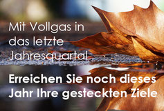 Newsletter Vertrieb und Verkauf von Verkaufstrainer Thomas Pelzl - Thema Neukundenakquise und Aufträge, Verkaufsabschluss, Jahresendbesuche Vertrieb
