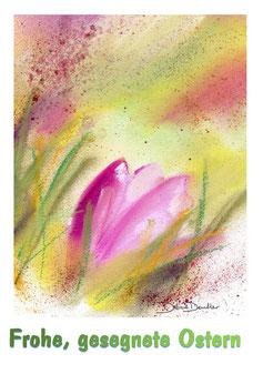 Tulpe Ostern