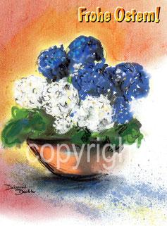 blaue und weisse Blumen in Topf