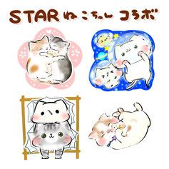 【通販】スター猫ちゃんコラボ