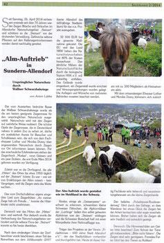 """""""Alm-Auftrieb"""" in Sundern-Allendorf - 02.2014"""