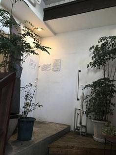 別府市|大分市|カフェ|お散歩代行|ペットホテル