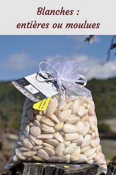 amandes blanches, amandes, amande-bio-moulue, amandes-émondées, amandes-blanches-biologiques, poudre-d'amandes, poudre-d'amandes-blanches,