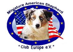 Logo Miniatur American Shepherd Club Europe e.V. MASCE