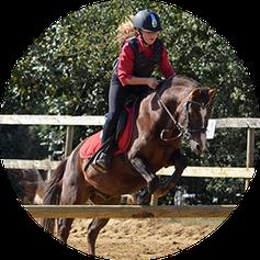 ferme equestre vautoudan porcaro centre equestre poney club
