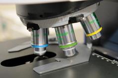 Mikroskop für die NCL-Forschung