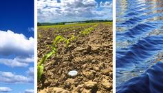 humidité du sol, agriculture, irrigation, arrosage, sondes capacitives, Sentek, météo