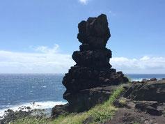 ハワイ オアフ島 ワイキキ ペレの椅子 専用車での貸切観光 チャーター 日本語タクシー