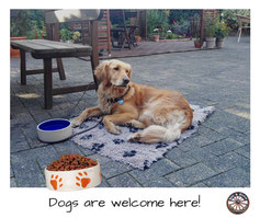 Een hond is toegestaan in Bed & Breakfast in Heek