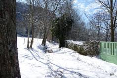 chemin gravillonné en hiver
