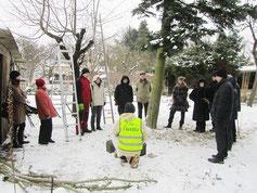 Robert Preis (vorn) erklärt wichtiges zum Baumschnitt und Vogelschutz
