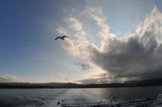 Fähre von Brodick (Isle of Arran) nach Androssan (Festland)