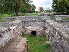 Kastell Abusina, Gebäude des Lagerdorfes