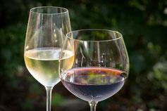 Wein Requena Bodega Weinkeller Weinprobe Weinfass