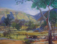 Ormiston Gorge NT-acrylic painting