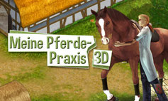 Artwork Pferde-Praxis 3D
