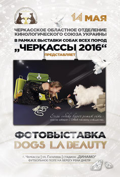 photo exhibition, DOGS` LA BEAUTY, 2016, advertising, dog show Cherkassy 2016 Ukraine, dog shows, photo