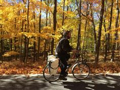 L'automne new yorkais