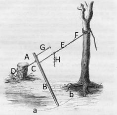 Abbildung 2: Schematische Funktion des Waldteufels