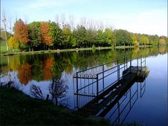 Etang de Fontaine-lès-Vervins à 1 min à pied